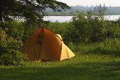 Summer Camping
