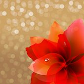 Abstract Red Flower With Bokeh