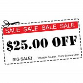 Twenty Five Dollars Off Sale Coupon