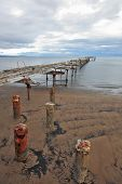Collapsed on a wooden platform sitting flocks of sea gulls. Old ruined pier in the Strait of Magell