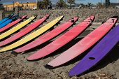 Ten novice surfboards lined up on the beach