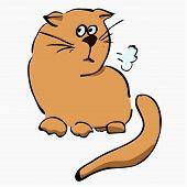 little unhappy light brown cat