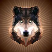 Polygonal Wolf