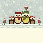 pic of owls  - Christmas greeting card with family of owls and place for text - JPG