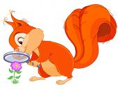Illustration of very cute squirrel are researching flower