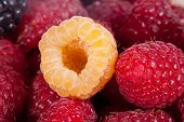 background of group of colorful raspberries macro