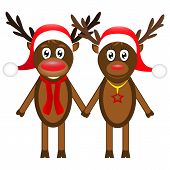 Christmas reindeer on white background