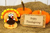 picture of shapes  - Happy Thanksgiving tag with turkey shaped cookie on burlap with pumpkins - JPG