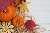 Fall Harveset In Straw With Fall Leaves