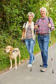 Elderly man and woman hiking and walking with dog in nature