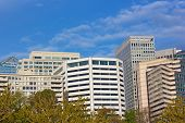 Office buildings in Arlington Virginia.