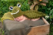 Newborn Baby Wearing An Alligator Costume