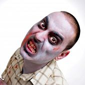 portrait of a scary zombie on a white background