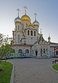 Nativity Of The Blessed Virgin Cathedral In The Conception Convent In Moscow Vertical View