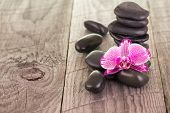 Fuchsia Moth Orchid And Black Stones On Weathered Deck