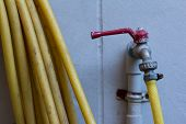 Faucet And Hose