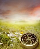 Compass in a spring scene
