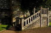 Stone Staircase Beneath Trees In Battle Abbey