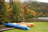 Kayaks In Rain