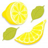 Slice And Half Of Lemon Vector
