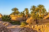 Vegetation In The Karnak Temple Complex - Luxor, Egypt