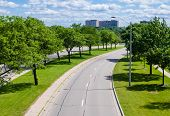 Empty Street Curving Right With Trees