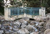 Scenic bridge in Sir James McCusker park