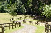 Winding drive way to country home in rural setting.