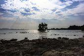 Koh Mook Coast.