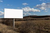 Nature Landscape And Alone Billboard