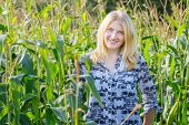 Portrait of blonde young woman in corn field