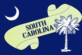 South Carolina Scroll