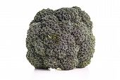 Healthy Organic Broccoli