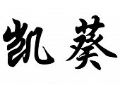 English Name Caiquy In Chinese Calligraphy Characters