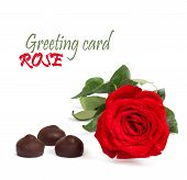 Red Rose With Green Leaves And Chocolate Isolated On White Background