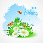 Spring greeting card with daisies. Vector illustration