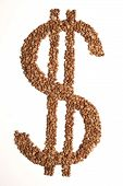 Dollar Sign Made Of Buckwheat On  White Background