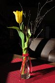 Table decoration with yellow tulip