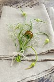 Still Life With Garlic Buds And Bouquet Flowers On Linen Tablecloths