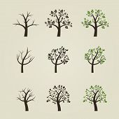 Set of different trees silhouette with roots and branches for logo, label, sign or tattoo.