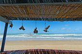 Morocco, The Beach Of Sidi Ifni