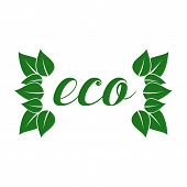 Eco friendly sticker, tag or label with green leaves.