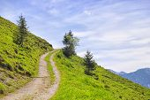 pic of bavaria  - Landscape on the mountain Breitenstein in the Alps in Bavaria Germany - JPG