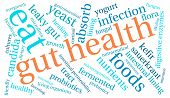 pic of enzyme  - Gut health word cloud on a white background - JPG