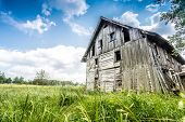 picture of abandoned house  - Abandoned wooden house surrounded by romantic nature - JPG