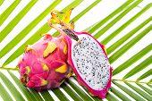 stock photo of dragon fruit  - Dragon fruit on palm leaf against white background - JPG
