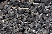 picture of firewood  - Firewood texture - JPG