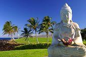 Buddha In Paradise