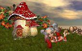 The Elf House