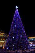 Luces de Navidad en la noche. Decoradas en azul al aire libre